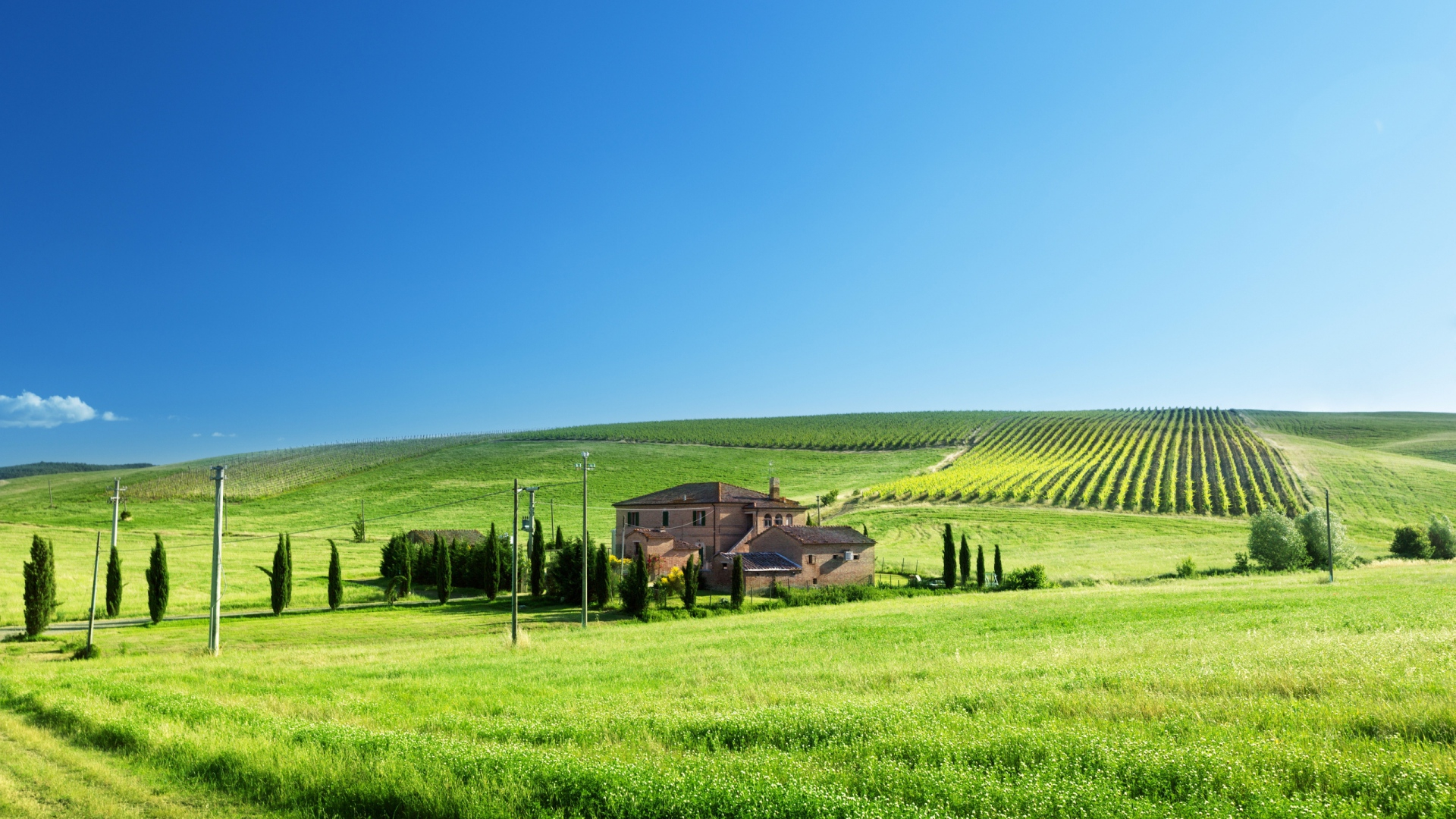farms-tuscan-farm-bright-summer-day-hills-fields-sky-wallpaper-background-free